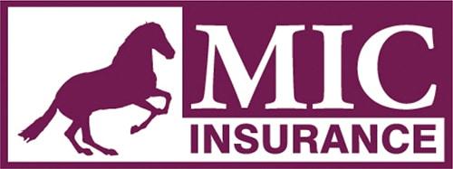 MILLENNIUM assurance etancheite
